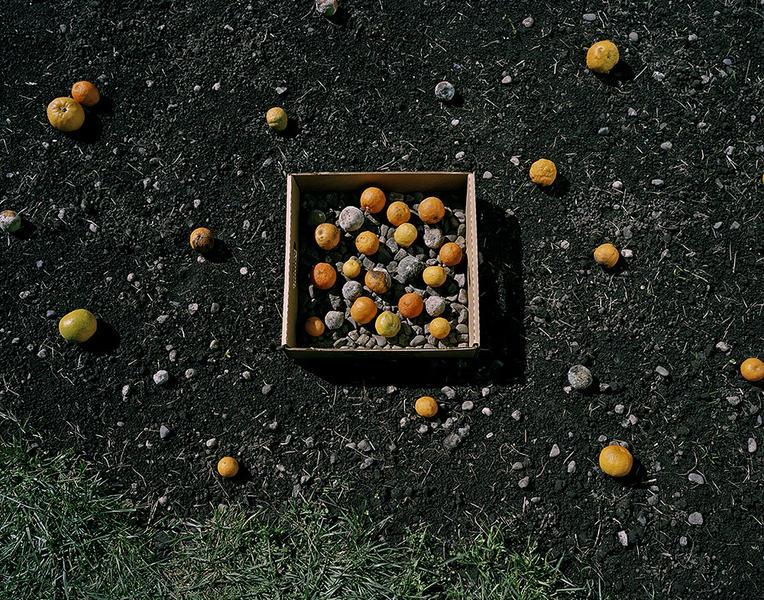 Oranges and Stones