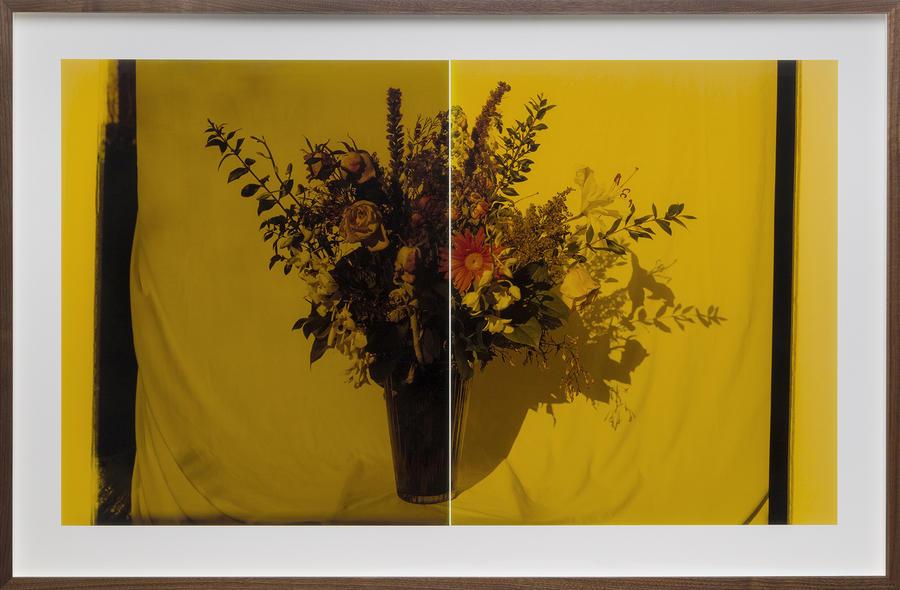 Untitled (Still Life, No. 2)