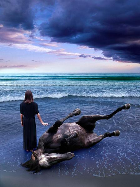 Sea Horse