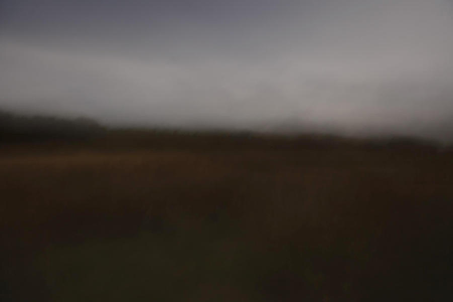 Paesaggi Lunari, 2012