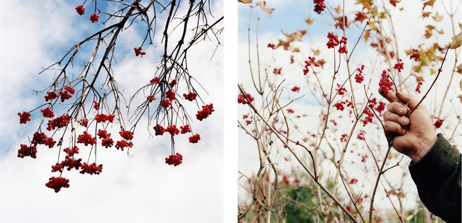 Untitled diptych, from 'Stone by Stone'