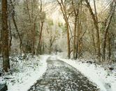 A Snowy Path near Salt Lake City, Utah