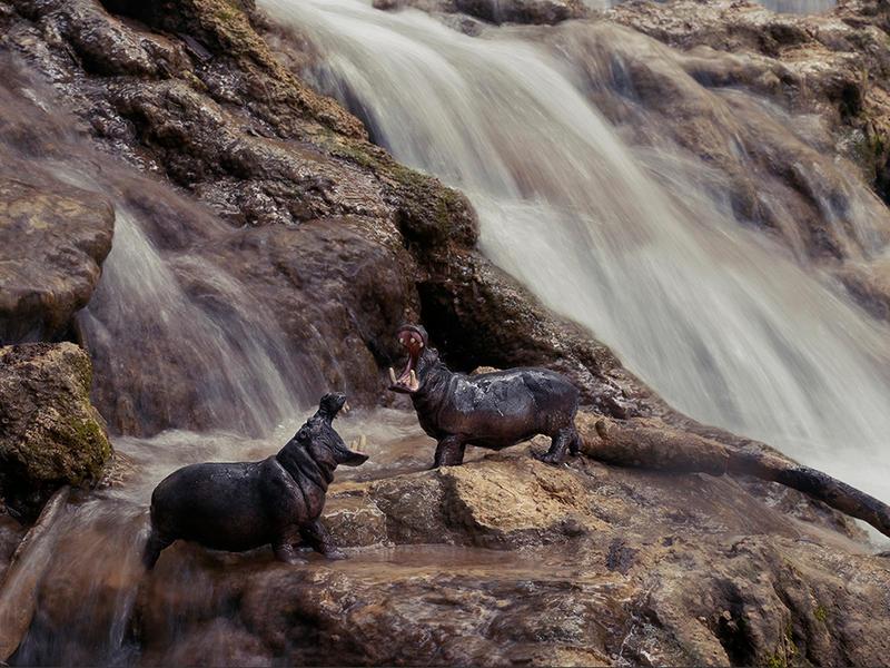 Hippos, Krka Falls Croatia