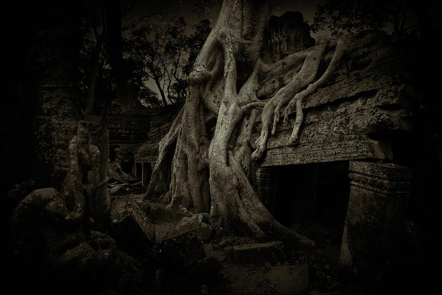 Ta prohm Temple 1, Cambodia