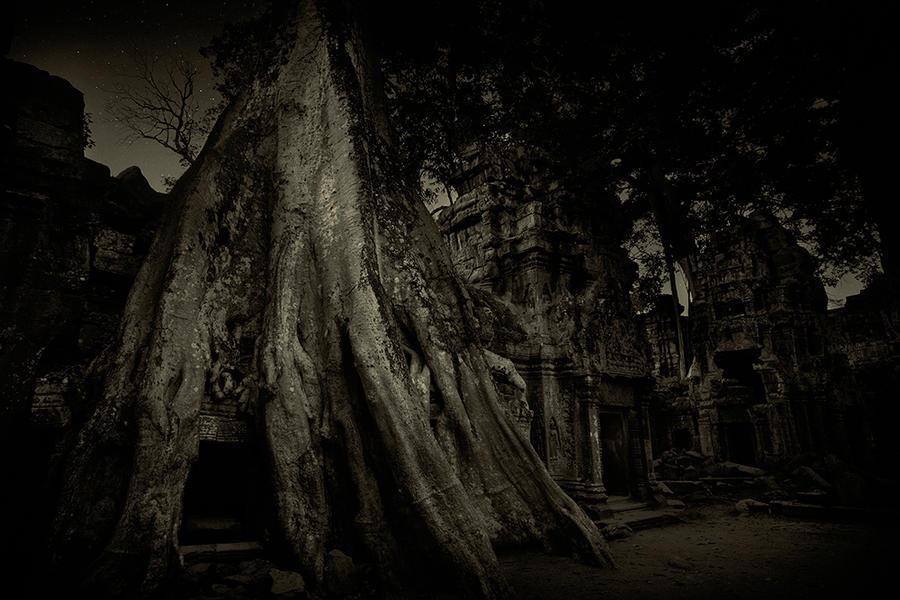 Ta prohm Temple 2, Cambodia