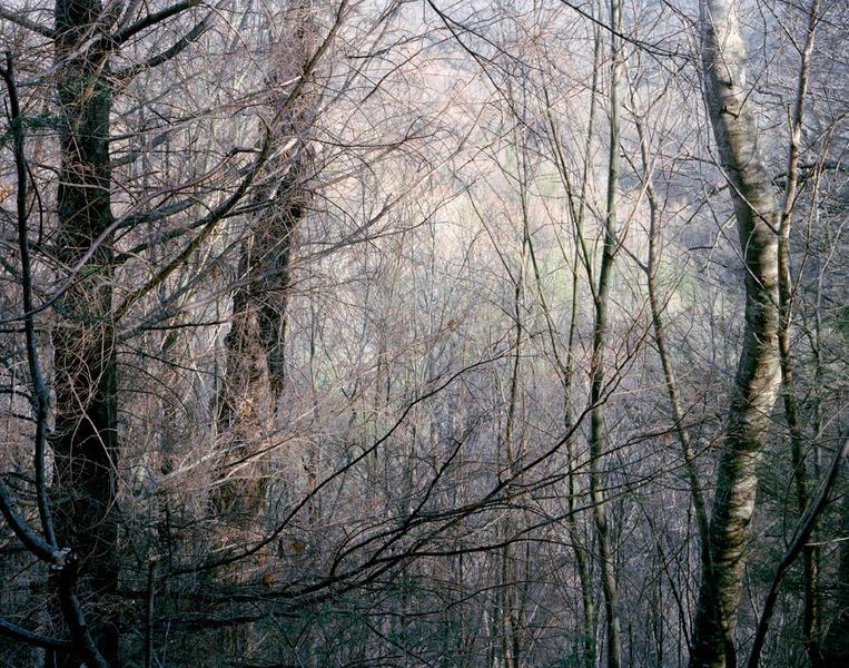 100 Prime Mountain Acres, Whitetop, Virginia, 2011