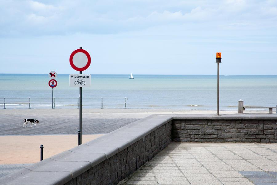 Dog on the boardwalk, Oostende, Belgium