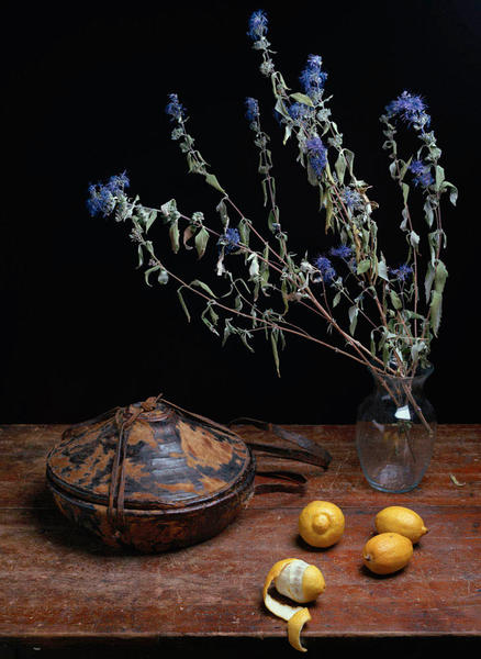 Still Life with Agelgel and Lemons