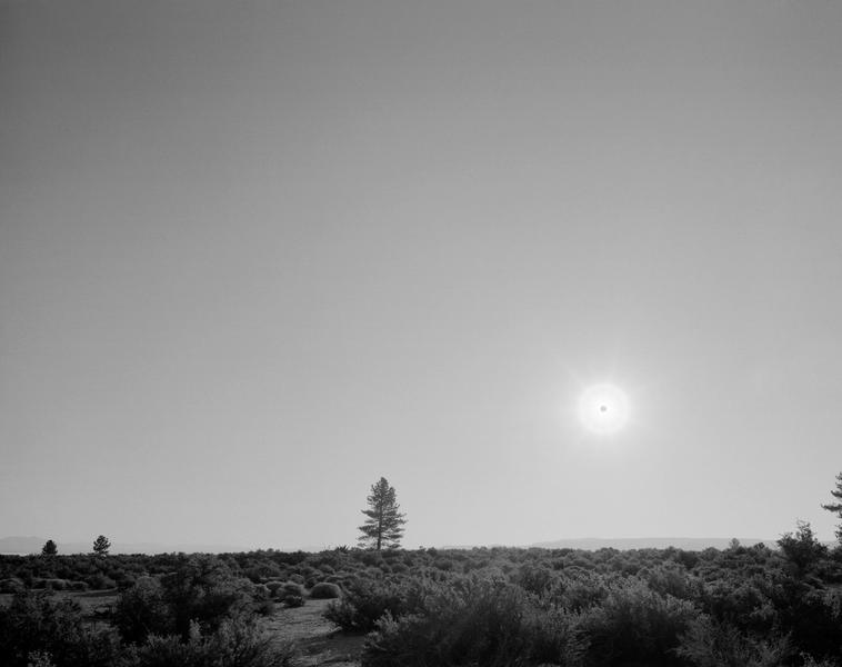 Black Sun, Mono Lake, CA 6/25/03