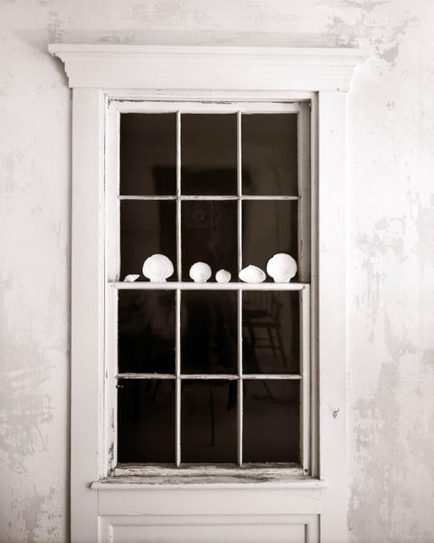 Window with Shells at Night