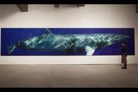 Minke Whale Composite One, 2009