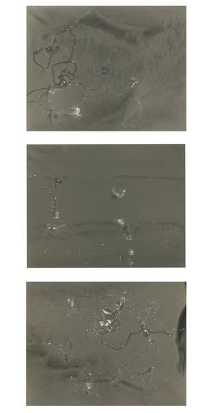 Plasmic Ripples, 2012