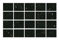 Supercluser Arion, 2012 - installation view