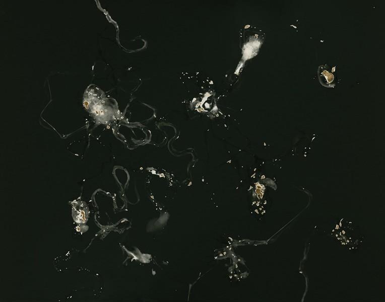 Supercluster Arion / Cloud 2t
