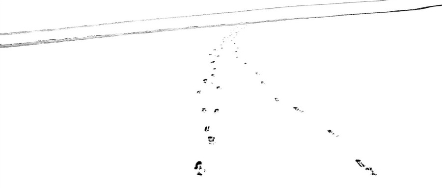 Snow Tracks 7, 2012.