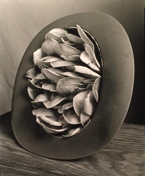 Flower Hat, 2017