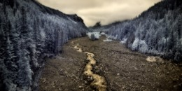Nisqually River, Washington
