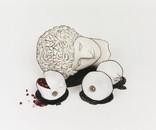 Nature Morte no. 9 (Head with Pomegranates), 2009