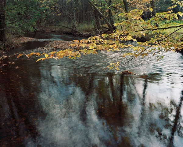 Lower Mill River [view #2]