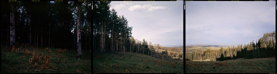 N40°  W107° - Routt NF, Toponas, CO, 2012